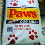 Paws dogloverszw 1